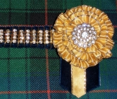 Showing Browbands